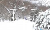 3월 눈 풍경